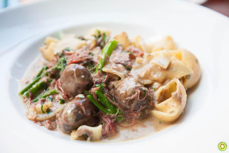 Braised Beef Shortrib Jumbo Macaroni